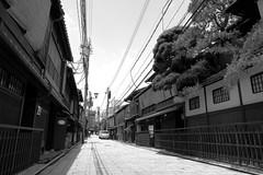 Gion-shirakawa-no7 (captain) Tags: kyoto gion shirakawa