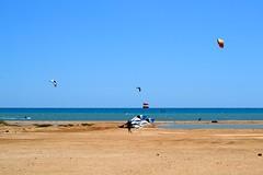 28_05_2016 (playkite) Tags: red sea kite egypt kiteboarding kitesurfing gouna vacations kiting hurghada elgouna          kitelessons kiteinhurghada