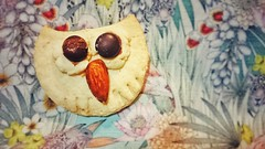 Sony Xperia Z1 Compact / (Pumpkin Chief) Tags: food cute cookie snack owl   sonyxperiaz1compact