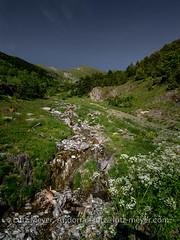 Andorra rural: La Massana, Vall nord, Andorra (lutzmeyer) Tags: andorra arinsal cg5 cs520 comallemplacomarca europe gebirge iberia iberianpeninsula lamassanaparroquia lutzmeyer pirineos pirineus pyrenees pyrenen riudelcovilarinsal berge bilder fotos frhjahr frhling gebirgszug hauptstrasse iberischehalbinsel imagen images imatges june juni junio juny landscape landschaft lutzlutzmeyercom mainroad mfmediumformat montana montanas mountains muntanyes natur natura nature paisaje paisatge parroquia photography photos pics pictures primavera rural rutaciclista10arinsal schild sonnenaufgang sortidadelsol spring springtime sunrise vallnord lamassanavallnord