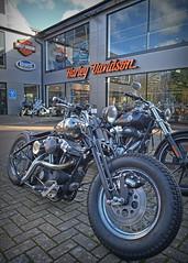 Just Bobbing along... (Harleynik Rides Again.) Tags: bike knuckle fake harley hd sportster bobber nikondf guildfordhd harleynikridesagain