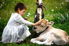Caress (MelindaChan ^..^) Tags: china girl kid warm mel  melinda calf grassland caress xingjiang chanmelmel melindachan