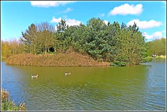 The Island .. (** Janets Photos **) Tags: islands naturereserves uklakes noddlehill anglinghull