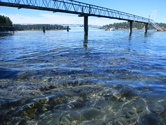 Clear waters of Bennett Bay (Ruth and Dave) Tags: ocean sea water docks bay clear walkways gulfislands shallow hightide mayneisland bennettbay
