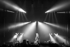 The Adicts. (Gerardo Nava Fotografa.) Tags: art rock mxico photography photo concert punk live sony concierto sigma bn contraste alpha adicts a57 2016 theadicts sonyalpha sigmaart sonya57 sonyflickraward droogarmy sonymxico