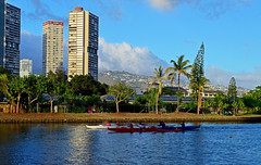 Late Afternoon on the Ala Wai (jcc55883) Tags: hawaii oahu alawaicanal alawaiboulevard canoe paddling lateafternoonlight nikon nikond3200 d3200
