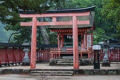 Kiyomori Shrine (TheSpaceWalker) Tags: japan temple photography photo nikon traditional sigma pic apo miyajima 70200 d300 kiyomorishrine thespacewalker
