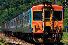 _77A9568 (reeffoxes) Tags: train taiwan railway taimali