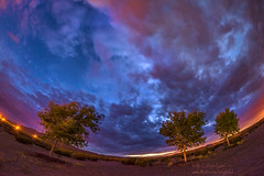 Starry Cloudy Night (inlightful) Tags: nightphotography trees sky newmexico southwest clouds rural desert astronomy nightsky starrynight