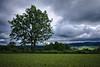 Waldviertel - Impressions (redy1966) Tags: blue cloud storm green weather forest quarter heavy waldviertel oesterreich 2016