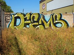DEEMS (BGIZ) Tags: art graffiti tsa walls dbr deems