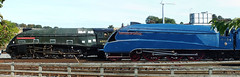60010 & 4489 Dominion of Canada . (steven.barker57) Tags: uk blue england canada garter museum photoshop pacific photoshopped railway national a4 nrm dominion lner shildon 4489 60010 repatriated greslay repattriated