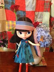 LuLu wishes everyone a happy flag day! especially rainbow flags.
