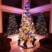 Christmas at Riverdance