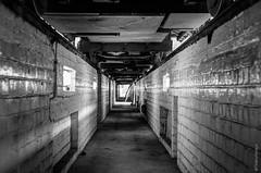 Dans la fosse, sous les trams [Dépôt Stib #5]