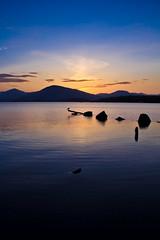 Bird on a perch (mtwhitelock) Tags: sunset scotland lochlomond milarrochybay millarochybay