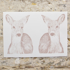 Double Deers - Limited Edition of 25 - One Color Screen Print - A3 - Artwork by Karl Addison (karl_addison) Tags: original color art love water illustration pen ink paper print artwork hands screenprint heart time drawing tags screen printing press limited edition a5 materials patience idrawalot karladdison addisonkarl