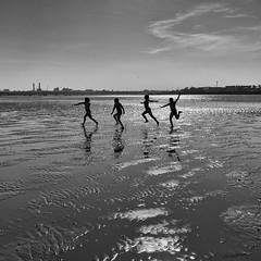 sea urchins (zip po) Tags: blackandwhite dublin children mono harbour tide silhouettes utata:project=tw377