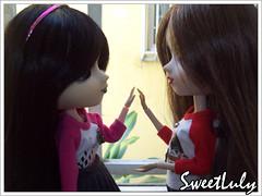 Kim n' Wendy (SweetLuly) Tags: dolls pullip kimberly wendy chill obitsu cancanwig 25cm pullipchill studiomerge pullipmelissa