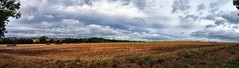 Panorama from Wood Lane (Northern Dave) Tags: leica england sky west english public field clouds lens lumix grey countryside amazing open path walk space yorkshire 14 country sunday leeds 15 panasonic land fields pastures footpath rolling agricultural scholes scudding fz38 dmcfz38