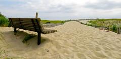 Beach Path Bench (Catskills Photography) Tags: ocean beach bench shore hbm benchmonday canong15