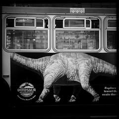 Muni Dinosaur (Jeremy Brooks) Tags: blackandwhite bw bus blackwhite dinosaur muni transit iphone hipstamatic