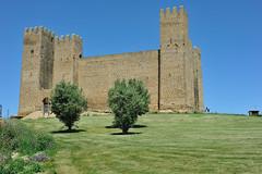 Castillo de Sádaba (TerePedro) Tags: sádaba zaragoza españa castillo castle château schloss castelo