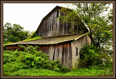 This Part Looks OK (the Gallopping Geezer 3.8 million + views....) Tags: house building abandoned home barn rural canon decay michigan farm country rustic shed farmland structure faded vacant worn derelict deserted decayed geezer dwelling 2013 tonemap