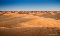 Tunez 22 (ignacio izquierdo) Tags: travel desert tunisia desierto tnez tunez