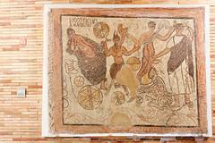 035 (Museo Nacional de Arte Romano) Tags: arte roman mosaic romano merida late museo nacional ariadne dyonisos