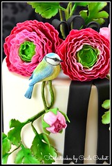 Ranunculus and Bird Cake (close-up) (Fantasticakes (Ccile)) Tags: bird ranunculus lovebird gumpaste sugarflowers sugarmodelling doublebarrelcake