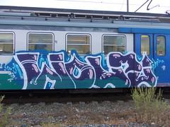 DSCN1848 (en-ri) Tags: train writing torino graffiti arrow 13 viola 2013 wonz