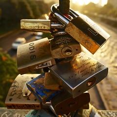Bridge of Love - Providencia - Santiago de Chile (a l o b o s) Tags: chile bridge santiago love de puente los sony padlock providencia enamorados candados nex5r