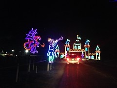 IMG_6196 (Ray Moore- RAR Studios) Tags: christmas december 2013 shadybrookfarm