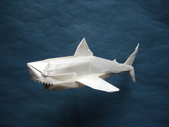 Nguyen Ngoc Vu - Great White Shark (shuki.kato) Tags: white paper shark origami great fold vu nguyen kato vog shuki ngoc