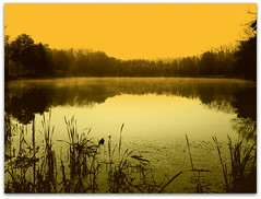 evening serenity (mujepa) Tags: sunset mist france fog reflections evening pond soir brouillard metz brume coucherdesoleil tang mygearandme mygearandmepremium mygearandmebronze mygearandmesilver outremoselle photographyforrecreationeliteclub
