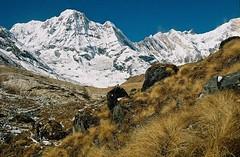 Annapurna South (peak), Bharha Chuli (peaks), Annapurnas round trek, Himalaya, Nepal, 2004 (mathieu.LM) Tags: autumn nepal mountain snow 2004 analog trekking trek landscape 1 wind south peak glacier round summit himalaya annapurna sanctuary fang annapurnas canoneos300 chuli i bharha