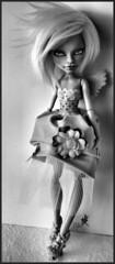 MH - CAM Witch full custom (Elfe de Lune) Tags: doll witch robe ooak cam custom poupe repaint createamonster monsterhigh monsterhighcustom