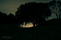 Mount Eden at night (Cedpics) Tags: night lights auckland nz lamps akl nuit lumires mteden thephotographyblog