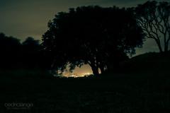 Mount Eden at night (Cedpics) Tags: night lights auckland nz lamps akl nuit lumières mteden thephotographyblog