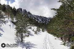 A long way (lvaro (Photographer & Graphic Designer)) Tags: naturaleza blanco ruta gris arboles natural nieve panoramic sierra cielo panoramica nubes montaa burgos hielo senda demanda lagunas neila