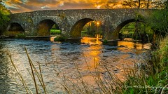 Arches At Sunset. (lmc 5/69) Tags: bridge trees ireland sunset irish sunlight reflection green nature water clouds river landscape landscapes spring scenery skies colours wildlife ngc foliage h northernireland flowing tyrone omagh greenscene waterenvirons naturewaterenvirons