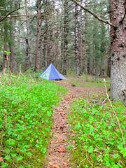 Pyramid Tarp on Rallston (The Cabin On The Road) Tags: alaska kayak kayaking seakayak tarp seakayaking alaskaseakayaking tarpcamp