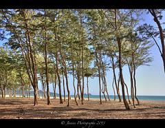Waimanalo Beach ( Janine ) Tags: ocean usa island hawaii oahu earlymorning august insel pacificocean pazifik lonelybeach pazifischerozean 2013 waimanalobeach pacificmorning