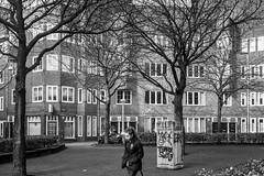 Amsterdam, Waalstraat (Bart van Dijk (...)) Tags: city urban bw girl monochrome amsterdam blackwhite zwartwit citylife streetphotography dailylife meisje stad vrouwen zw waalstraat stadsarchief monochroom peopleinthecity straatfotografie peopleinthestreets dagelijksleven mensenopstraat stadsleven peopleinamsterdam stadsarchiefamsterdam mensenindestad bartvandijk breeblebox menseninamsterdam cityarchivesamsterdam straatnamenenstadsplekken