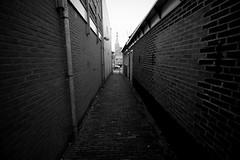 Oostersteeg (Harry Kool) Tags: city town blackwhite alley medemblik stad steeg oosetrsteeg nieuwatraat