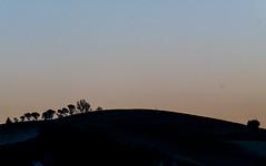 Collina in controluce (Massimo Saviotti) Tags: winter sunset panorama backlight landscape evening landscapes flickr tramonto hill hills vista inverno paesaggi paesaggio controluce colline collina sera sightseen