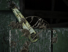 Barn window brace (hutchphotography2020) Tags: wood green window barn brace chippedpaint rottenwood