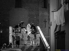 Bride is arriving (www.danbos.it) Tags: wedding bw bride chioggia