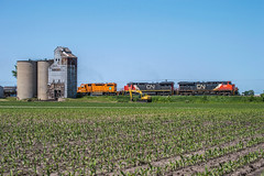 The J at Hayes (The_Midland_Railfan) Tags: cn hayes eje hayesillinois hayesil